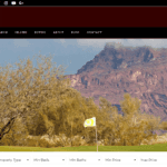 New Site Launch: Nicole Kleppe with ReMax Fine Properties